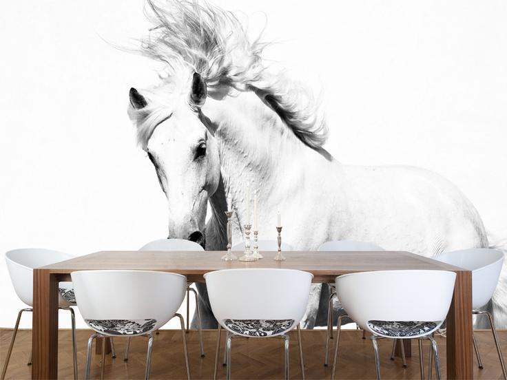 Eazywallz   White Horse Wall Mural, $131.22 (http://www.eazywallz Part 45