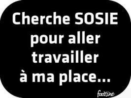 Gif Panneau Humour (1)