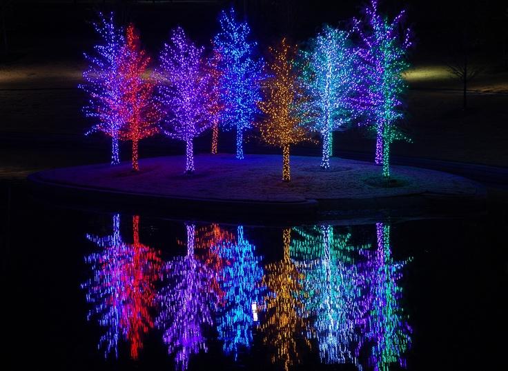 Christmas Lights Christmas Ideas Pinterest Gardens