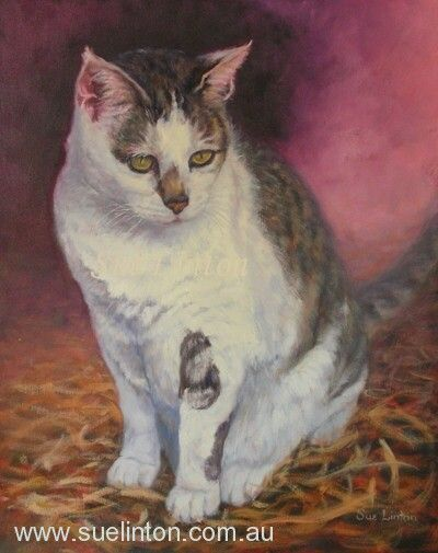 Memorial Oil portrait of Kitty
