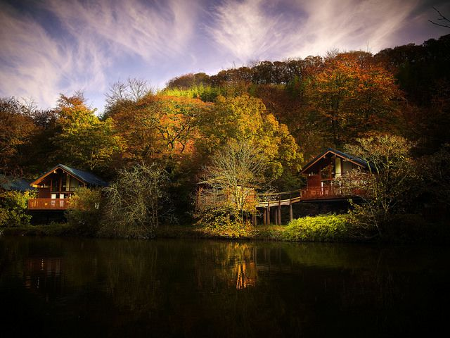Forests – the ultimate health fix! #Wellbeing #ForestRetreat #UKgetaway