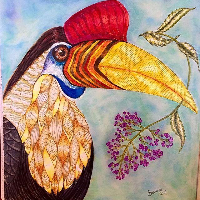 свои тропическая птица рисунок считает