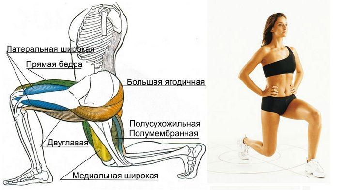 Как откорректировать форму ног? Самое быстрое и эффективное похудение