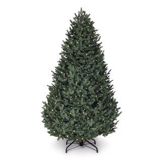 The 7.5' Balsam Hill Fir was the panel's favorite, earning high marks for its true green color and the natural-looking fall of the branches. At $999, it was the most expensive tree tested, but it delivers nice extras: