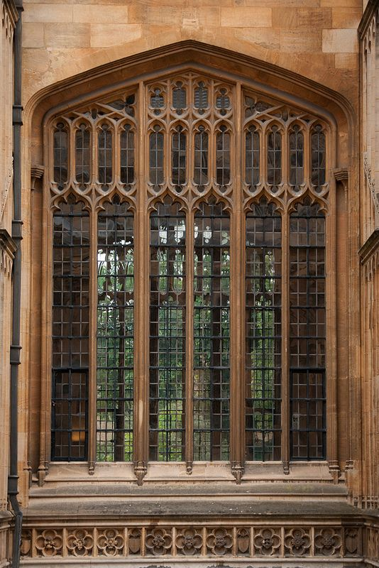 Divinity School Window, Oxford.  | Flickr - Photo Sharing!