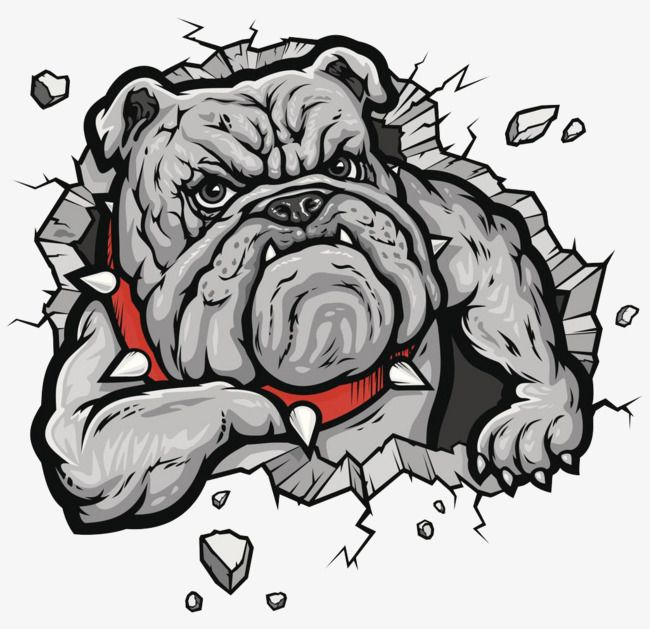 Millions Of Png Images Backgrounds And Vectors For Free Download Pngtree Bulldog Drawing Bulldog Art Bulldog Artwork