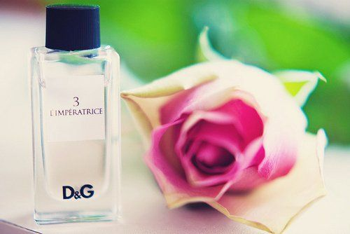 Profumo di natura ! #imperatrice #DG #dolceegabbana #fragrance #rose #roses #nature #lovely #adorable #verygood #inspirations