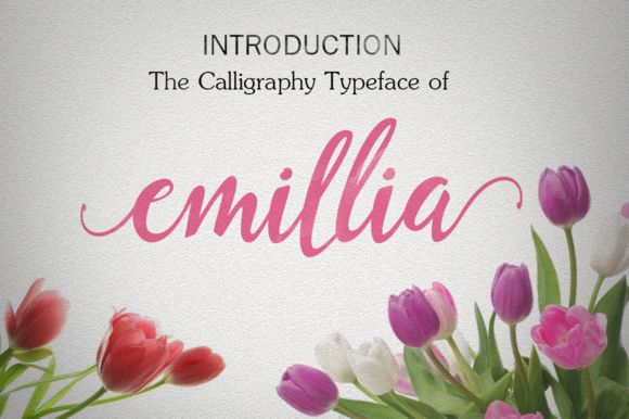 Emillia Script 25% of by GroenS on Creative Market