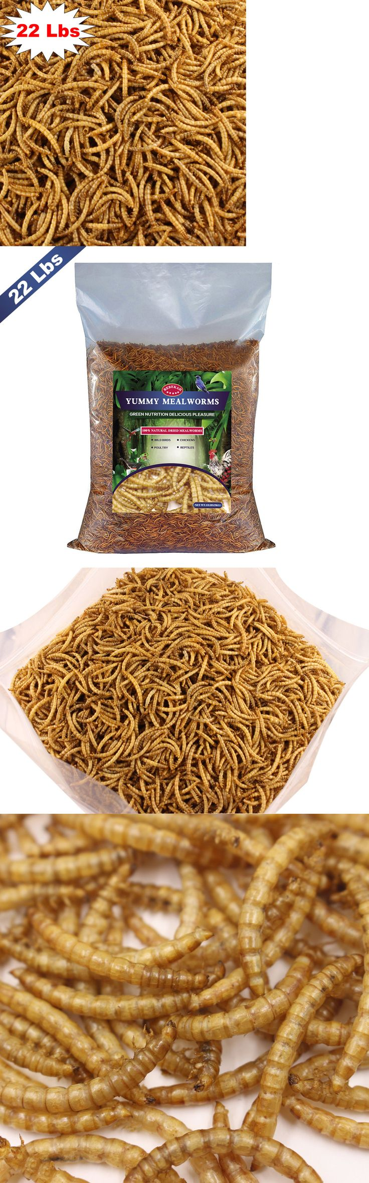 Food and Treats 116494: Bulk Dried Mealworms - Treats For Chickens And Wild Birds ( 22 Lbs ) -> BUY IT NOW ONLY: $115.99 on eBay!