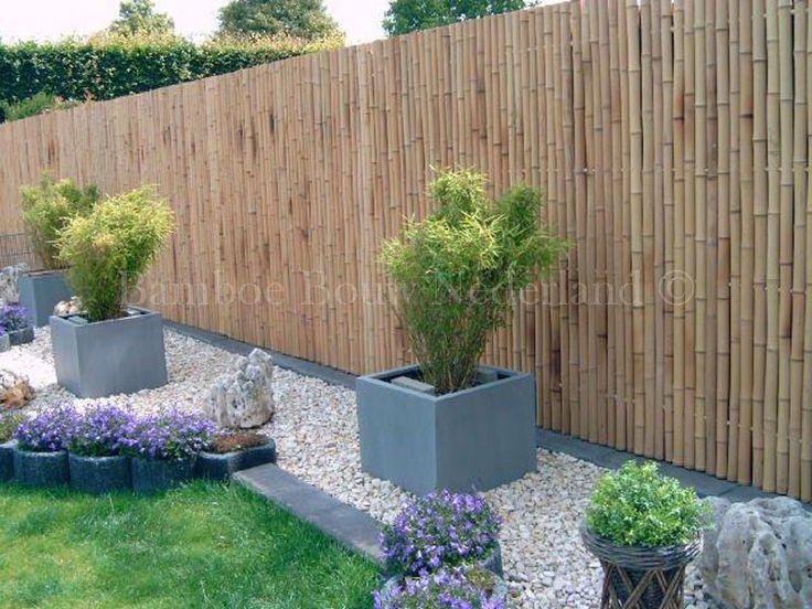 Tuinhek voortuin google zoeken terras inspiratie pinterest zoeken google en bamboe - Bamboe in bakken terras ...