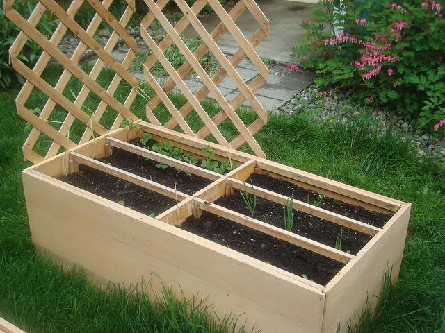 Recycled Dresser into raised vegetable garden bed!