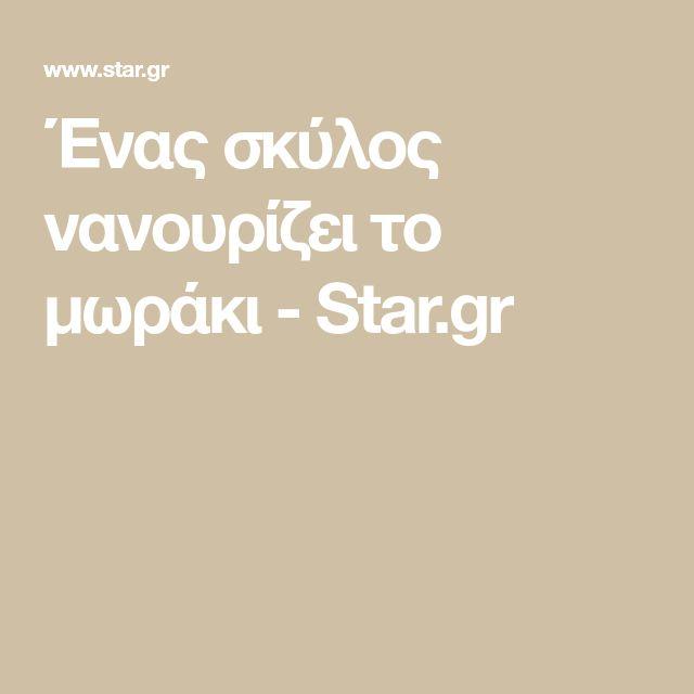 Ένας σκύλος νανουρίζει το μωράκι - Star.gr