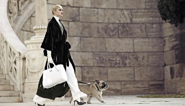 AVANTI Furs | www.avantifurs.com