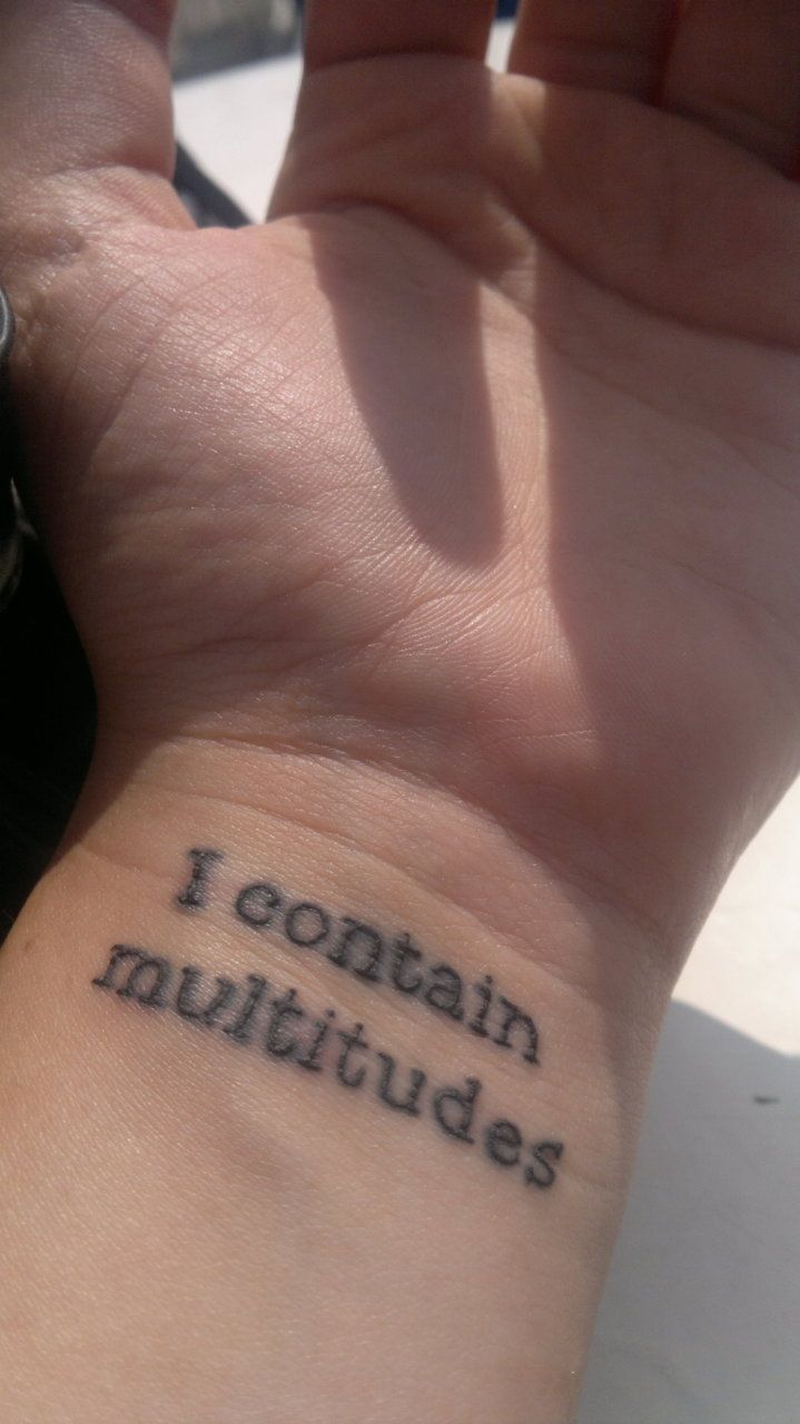 This is my third tattoo, and the second I've got at Dare Devil Tattoo in the LES NYC.  The line is from Walt Whitman's Song of Myself; it goes:  Do I contradict myself?  Very well then I contradict myself,  (I am large, I contain multitudes.)  To me it represents all the many definitions and versions of who I am, not just one fixed thing, but complex, always evolving and growing.