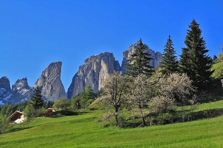Beautiful Dolomiti mountain - Sassolungo - www.dolomitigallery.com
