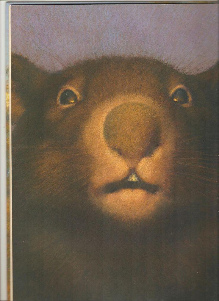 Wombat - Christian Birmingham