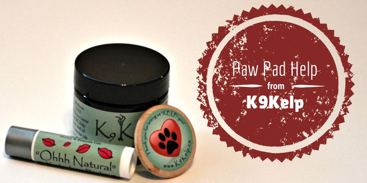 Paw Pad Help from K9 Kelp - Product Review