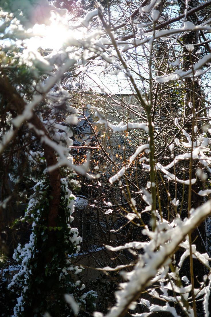 Winterstimmung. #winter #snow #weather #light #photography #fujifilm