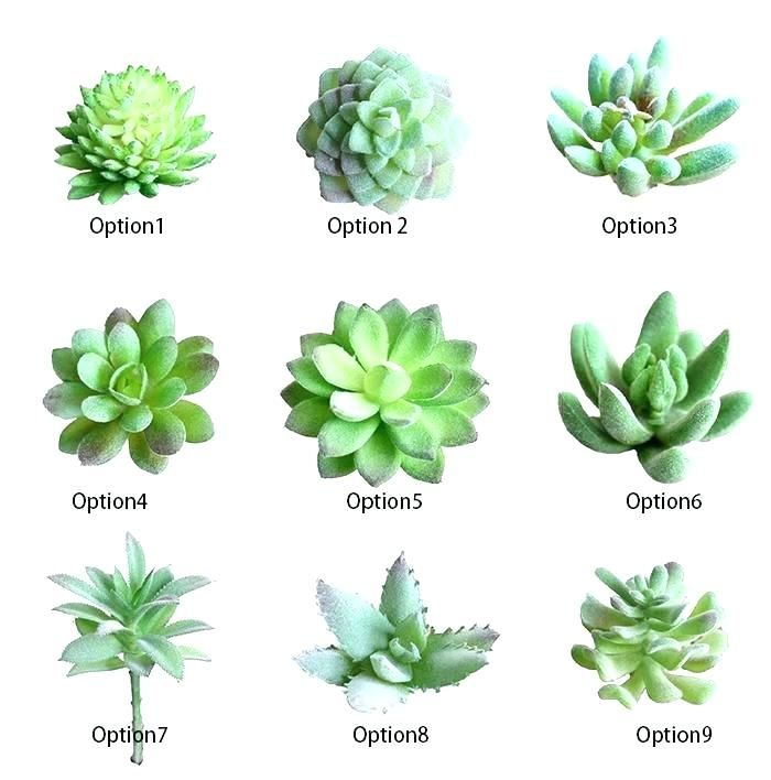 Image Result For Realistic Artificial Mini Succulent Plants Types Of Succulents Plants Planting Succulents Artificial Succulent Plants
