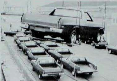 .Holden Kingswood Ute's.