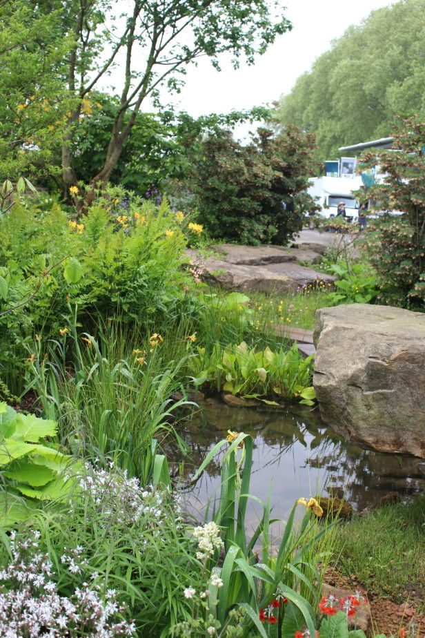 73 Pond Images Let You Dream Of A Beautiful Garden: 73 Best Ponds Images On Pinterest