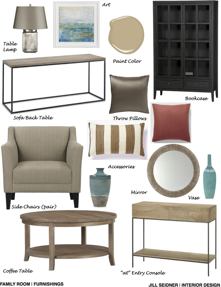 Potomac MD Online Design Project Family Room Furnishings Concept Board Interior