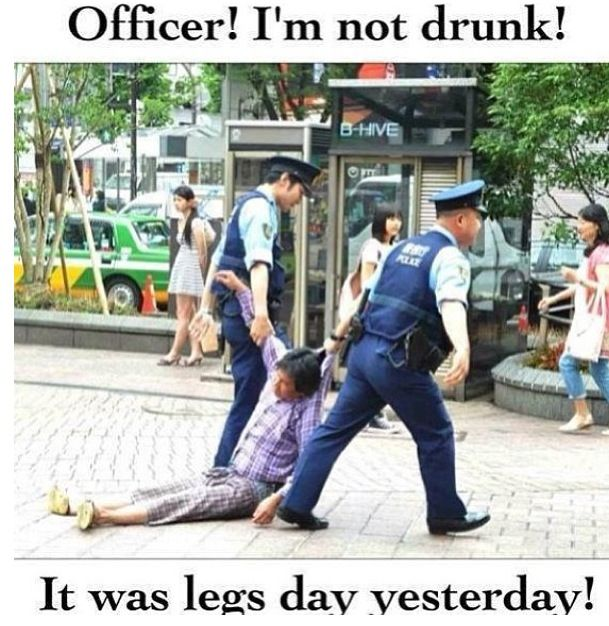 Funny After Workout Meme : Day after leg fitness funny exercises pinterest