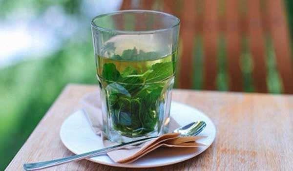 فوائد شاي النعناع للرجيم Satisfying Retreat Hammock