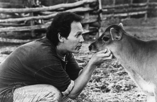 Billy Crystal & Norman - City Slickers