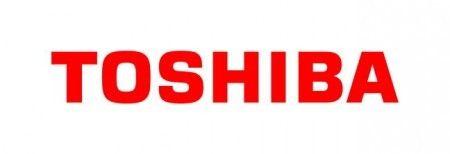 Printer cartridge voor Toshiba 6AG00000843 4519232131049.