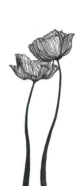 Poppies (intertwine stem once though) tattoo idea