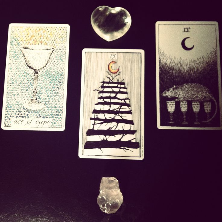 Tarot reading -- 3 card -- the wild unknown
