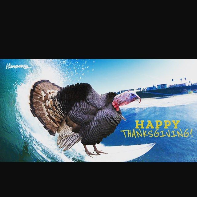 Wishing everyone a very Happy #Thanksgiving  ! There are so many beautiful things to be grateful for!  Thank you Hansens for the surfing turkey pic ! #brawbar #happythankgiving #gratitude #attitude #family #friends #healthyeats #eathealthy #plantprotein #veganeats #lettheturkeyride #cleaneating #holiday #enjoytheday by brawbar