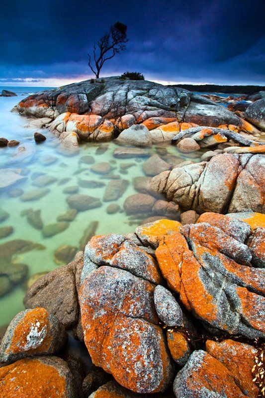 Bay of Fires http://matadornetwork.com/community/scottsporleder/photos/tasmania-part-ii-the-eastern-coast/308432_10150329047133450_266724958449_8269314_858875449_n/