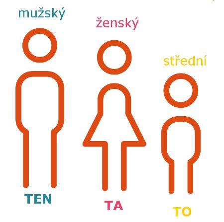 Rod podstatných jmen - Moje čeština - Čeština na internetu zdarma