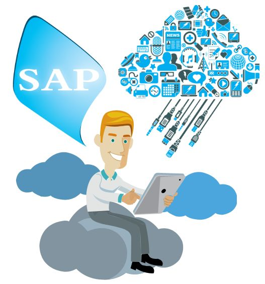 Overview of SAP Application Services By Accely