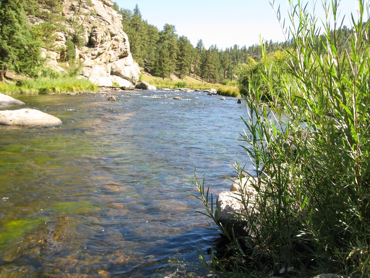 Best 25 lake george colorado ideas on pinterest for Canyon lake fishing ca