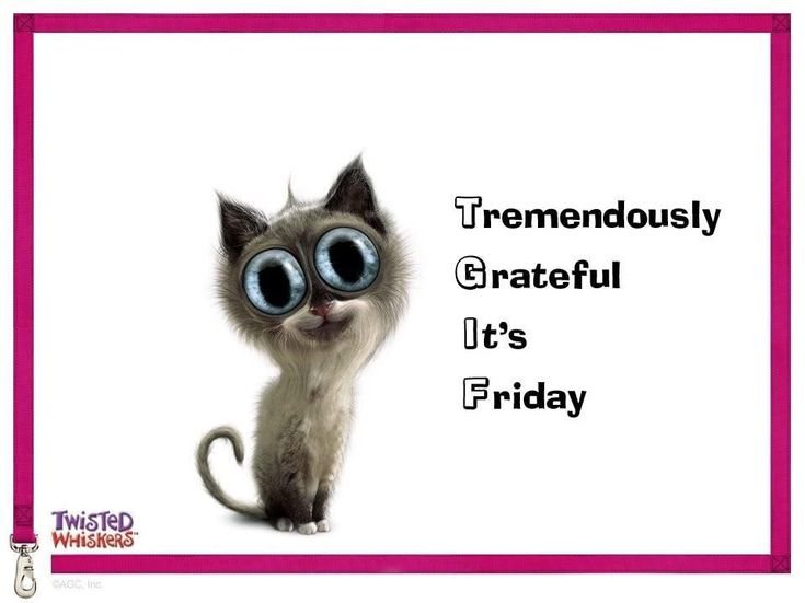 Friday Quotes Pinterest Humor: 45 Best Its Friday!!!! Images On Pinterest