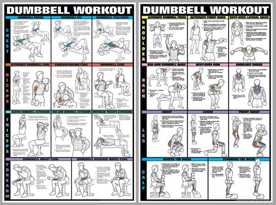 Dumbbell Workout 2 | workout lazy! | Pinterest | Charts ...