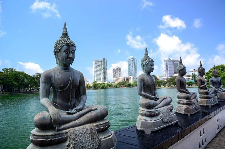 Ce voyage est idéal pour une première approche du Sri Lanka. L'itinéraire parcours les grands sites de l'Île et vous fera également découvrir les sublimes Parc Nationaux comme celui d'Udawalawe où les éléphants sont rois. Découvrez le Sri Lanka un destination encore préservée et pourtant sans équivalent en Asie.  http://www.tanirikka.com/voyage-prive/voyage-au-sri-lanka-les-incontournables/