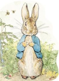 Peter Rabbit Birthday Party Ideas  Fun ideas for invitations, games, activities, decorations, food, favors and more!