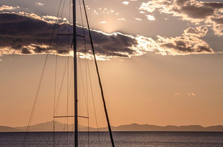L'albero al tramonto #portodellamaremma #maremma #toscana