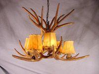 Antler Chandeliers & Lighting from CDN Antler. Helping you find the perfect antler chandelier or antler lighting solution.