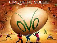 Cirque du Soleil Tickets - Bestellen Sie hier original Cirque du Soleil Tickets | TicketTube
