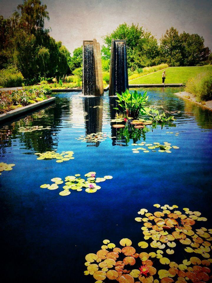 Urban Oasis! Denver Botanic Gardens