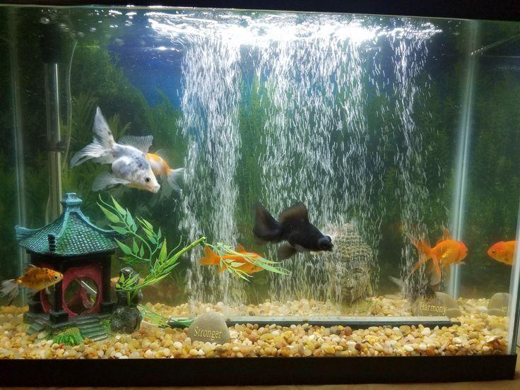 tetra waterfall globe aquarium instructions