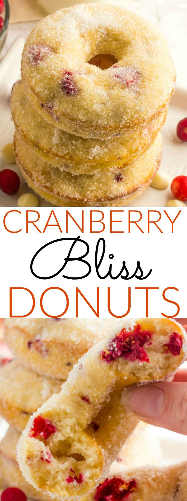 Wake up this Holiday season with these delicious Cranberry Bliss Donuts. Fresh cranberries and white chocolate are combined into the batter and baked until golden and tossed in sugar.