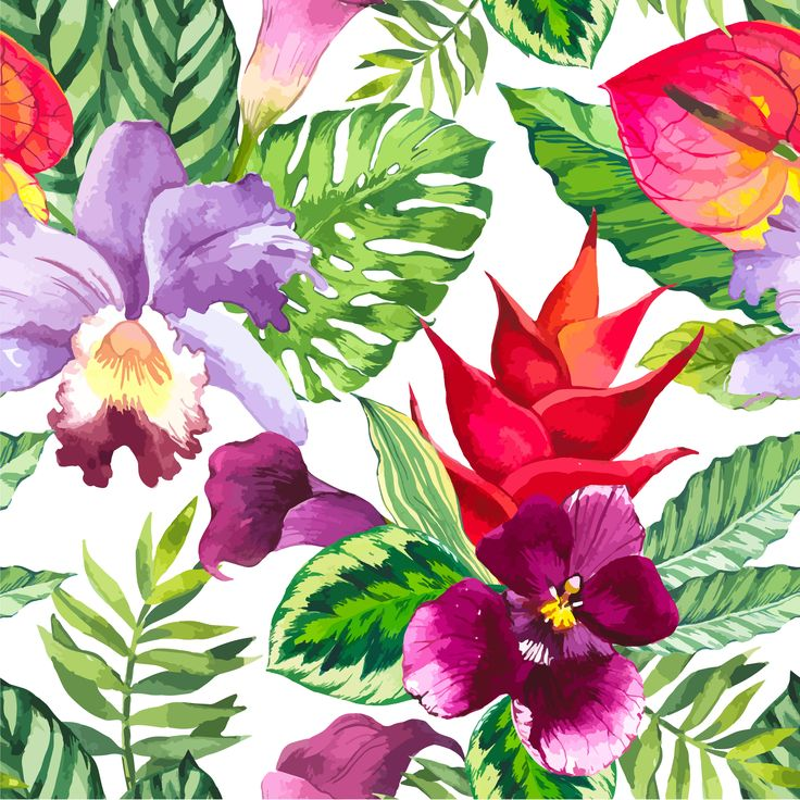 Vector illustration with watercolor flowers. Beautiful seamless background with tropical flowers and plants on white. Composition with calla lily, orchid, anthurium and monstera leaves.