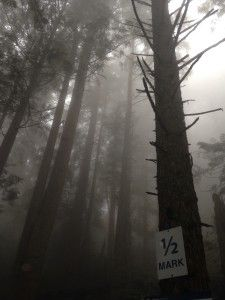 Grouse Grind, Vancouver 1/2 way