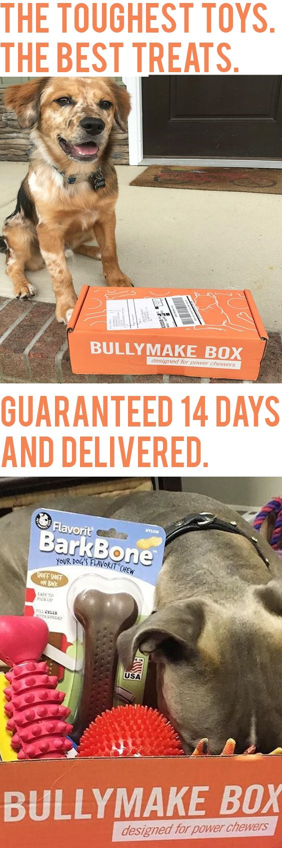 Is your dog a power chewer? Join 1000's and 1000's of other happy CHEWERS today and enjoy toys and treats delivered to your door.  Every toy guaranteed to last for 14 days or we replace them FOR FREE! See here: http://bullymake.com/vidlanding2/?utm_source=pinterest&utm_medium=pinterest-ads&utm_campaign=jun28-camp-all&utm_term=jun28-camp-all&utm_content=jun28-camp-all